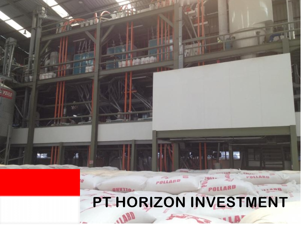 PT HORIZON INVESTMENT